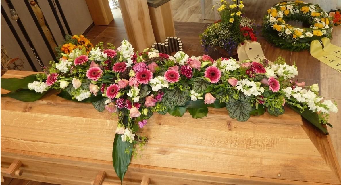 Weihnachtssterne,Strickmann,Sassenberg,Blumen,